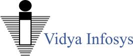 Vidya Infosys